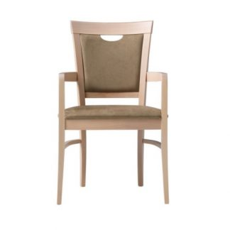 Brisbane Arm Chair | Desk Chairs | DC7HA
